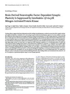 Brain-Derived Neurotrophic Factor-Dependent ... - Semantic Scholar