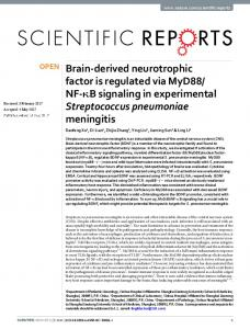 Brain-derived neurotrophic factor is regulated via MyD88/NF ... - Nature