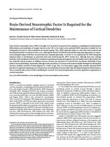 Brain-Derived Neurotrophic Factor Is Required for the Maintenance of ...