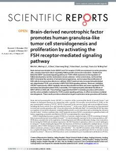 Brain-derived neurotrophic factor promotes human granulosa ... - Nature