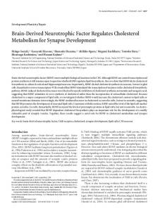 Brain-Derived Neurotrophic Factor Regulates ... - Semantic Scholar