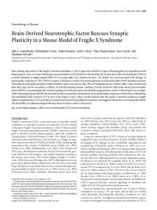 Brain-Derived Neurotrophic Factor Rescues ... - Semantic Scholar