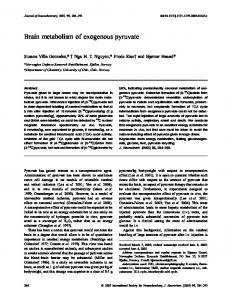 Brain metabolism of exogenous pyruvate - Wiley Online Library
