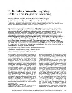 Brd4 links chromatin targeting to HPV transcriptional silencing - Genes ...