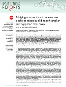 Bridging nanocontacts to macroscale gecko