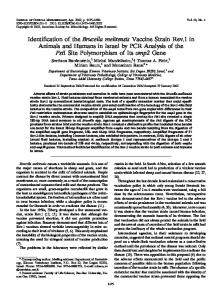 Brucella melitensis - Journal of Clinical Microbiology - American ...