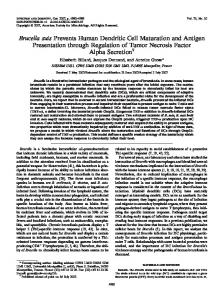 Brucella suis Prevents Human Dendritic Cell Maturation and Antigen ...