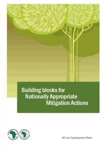 Building Blocks for Nationally Appropriate Mitigation Actions
