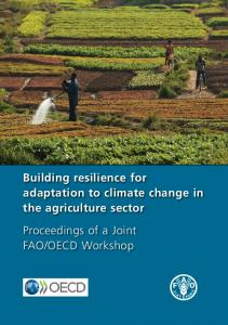 Building resilience for adaptation to climate change in the agriculture ...
