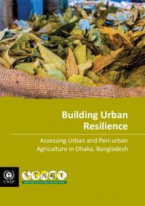 Building Urban Resilience