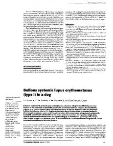 Bullous systemic lupus erythematosus (type I) in a dog