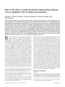 by Rhinovirus Infection Cells Induced from Human Airway Epithelial B ...