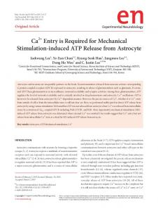 Ca2+ Entry is Required for Mechanical Stimulation-induced ATP ...