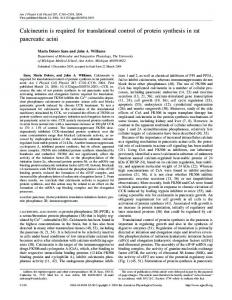 Calcineurin is required for translational control of protein synthesis in ...