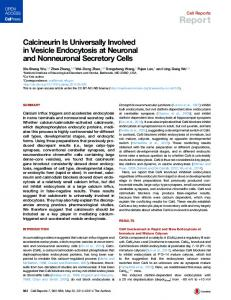 Calcineurin Is Universally Involved in Vesicle Endocytosis at Neuronal ...