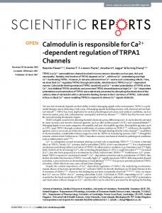 Calmodulin is responsible for Ca2+-dependent