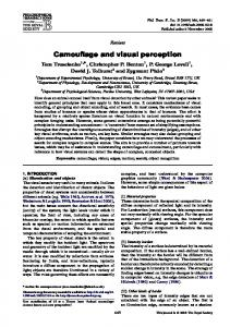 Camouflage and visual perception