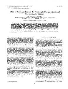 Campylobacter Species - Journal of Clinical Microbiology - American ...