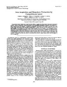 Campylobacterjejuni - Infection and Immunity - American Society for ...