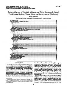 Candida albicans - Clinical Microbiology Reviews - American Society