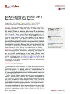 Candida albicans Gene Deletion with a Transient