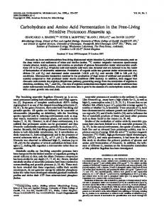 Carbohydrate and Amino Acid Fermentation in the Free-Living ...