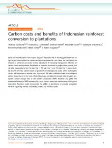 Carbon costs and benefits of Indonesian rainforest