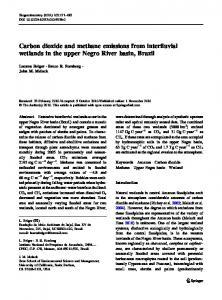 Carbon dioxide and methane emissions from interfluvial wetlands in ...