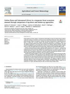 Carbon fluxes and interannual drivers in a temperate forest ecosystem