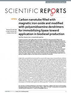 Carbon nanotube filled with magnetic iron oxide