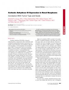 Carbonic Anhydrase IX Expression in Renal Neoplasms