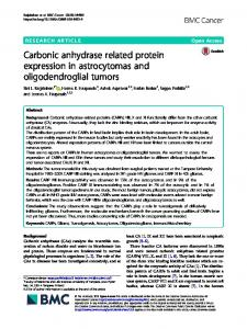 Carbonic anhydrase related protein expression in ... - BMC Cancer