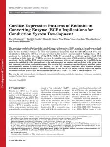 Cardiac expression patterns of endothelin ... - Wiley Online Library