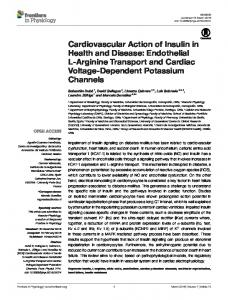 Cardiovascular Action of Insulin in Health and Disease ... - Core