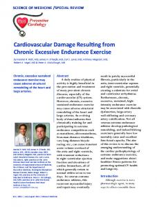 Cardiovascular Damage Resulting from Chronic Excessive - Fitscout.at