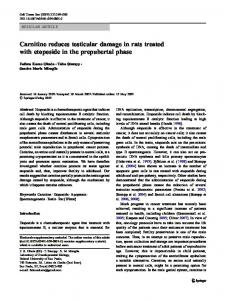 Carnitine reduces testicular damage in rats treated with etoposide in ...