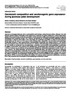 Carotenoid composition and carotenogenic gene expression during ...