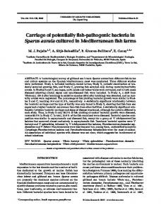 Carriage of potentially fish-pathogenic bacteria in Sparus aurata ...