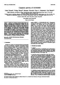 Catalytic activity of ADAM28 - Wiley Online Library