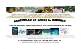catfish research institute special publication no. 1