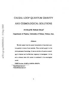 Causal Loop Quantum Gravity and Cosmological Solutions