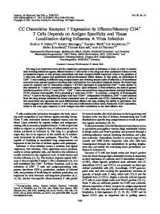 CC Chemokine Receptor 7 Expression by ... - Journal of Virology