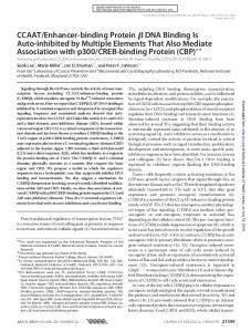 CCAAT/Enhancer-binding Protein DNA Binding Is ... - Semantic Scholar