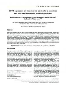 CD146 expression on mesenchymal stem cells ... - Wiley Online Library