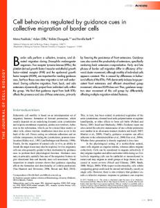 Cell behaviors regulated by guidance cues in collective migration of ...