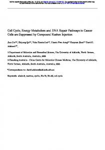 Cell Cycle, Energy Metabolism and DNA Repair Pathways in ... - bioRxiv