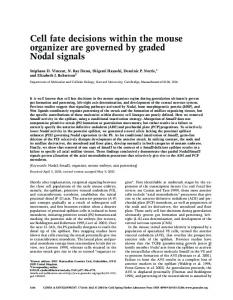 Cell fate decisions within the mouse organizer are governed by ...