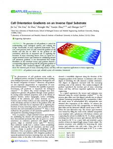 Cell Orientation Gradients on an Inverse Opal ... - ACS Publications