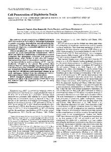 Cell Penetration of Diphtheria Toxin - The Journal of Biological ...