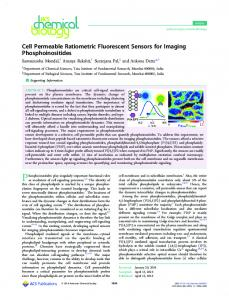 Cell Permeable Ratiometric Fluorescent Sensors ... - ACS Publications